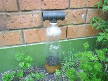 fly trap how to make mixture