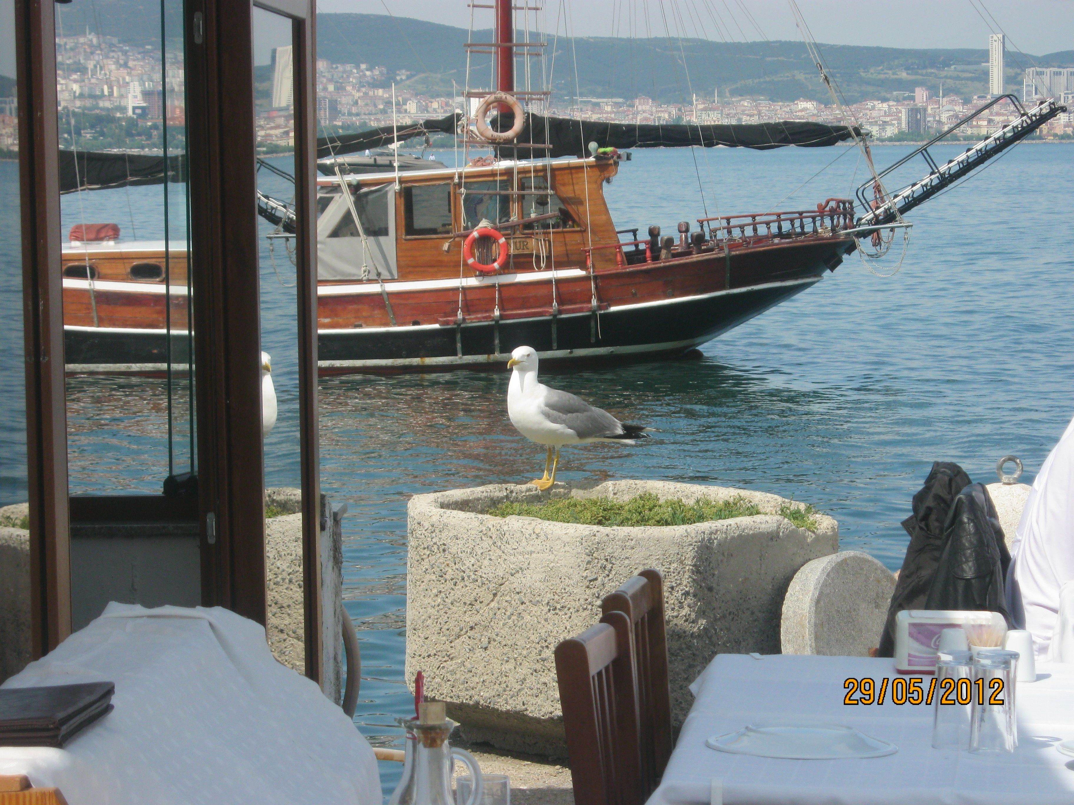 The sail boat and the cute seagull :))