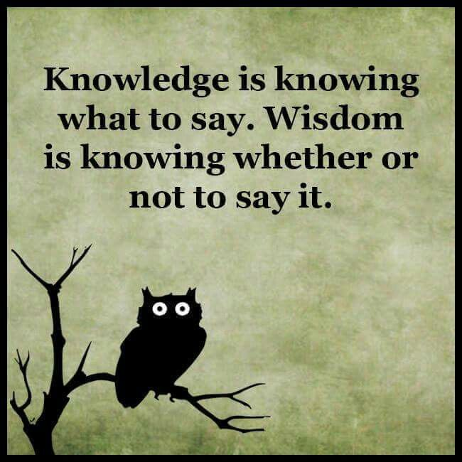 Knowledge Vs Wisdom Wisdom Quotes Owl Quotes Funny Inspirational Quotes