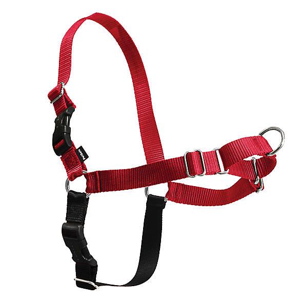 Petsafe Easy Walk Dog Harness Dog Harnesses Petsmart Easy Walk Dog Harness Easy Walk Harness Dog Harness