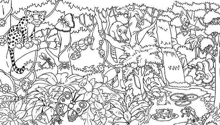 Sonquest Rainforest Coloring Mural By Gospel Light Publications Jungle Coloring Pages Animal Coloring Pages Forest Coloring Pages