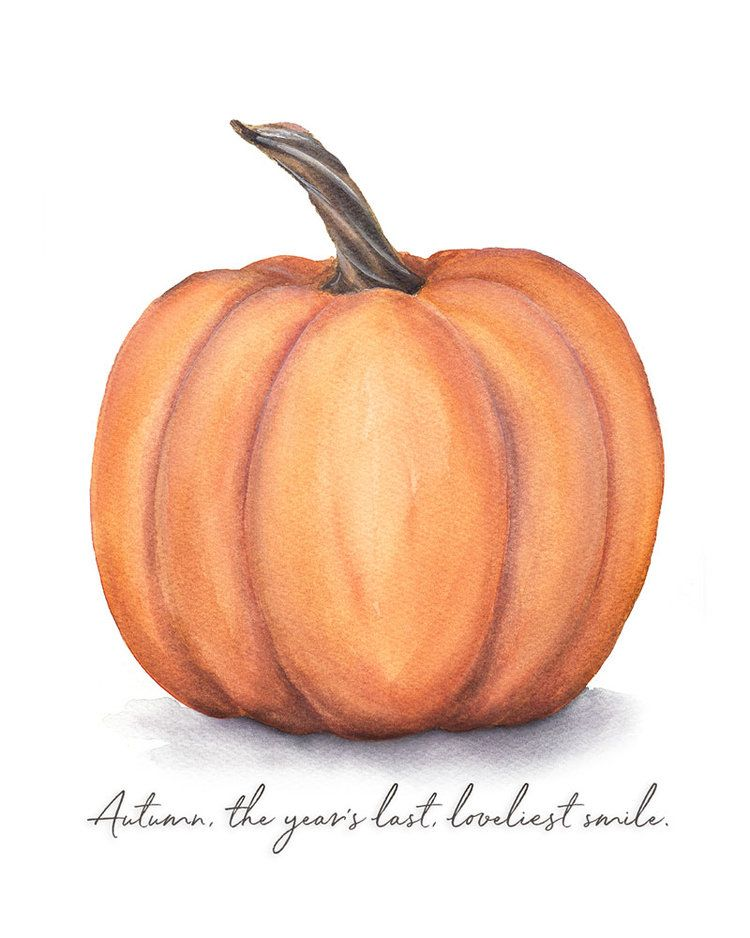 FREE Autumn Pumpkin Printable — Pip & Kate