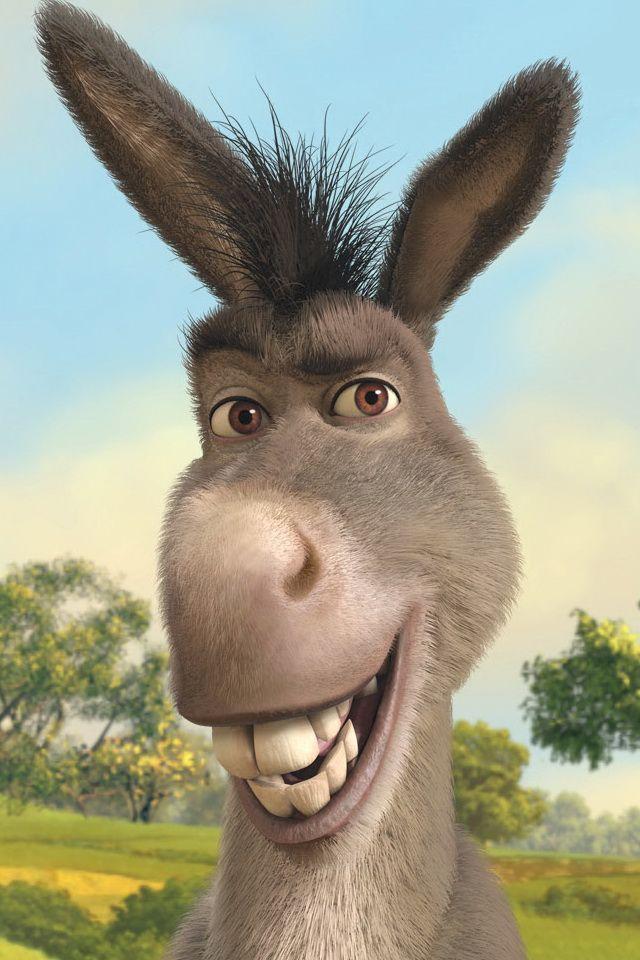 Donkey The Story Of Balaam And His Donkey A Hilarious Story But Shrek Character Shrek Funny Shrek