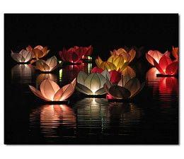 Lucky Boeddha Drijvende Lotus Wens Bloem Floating