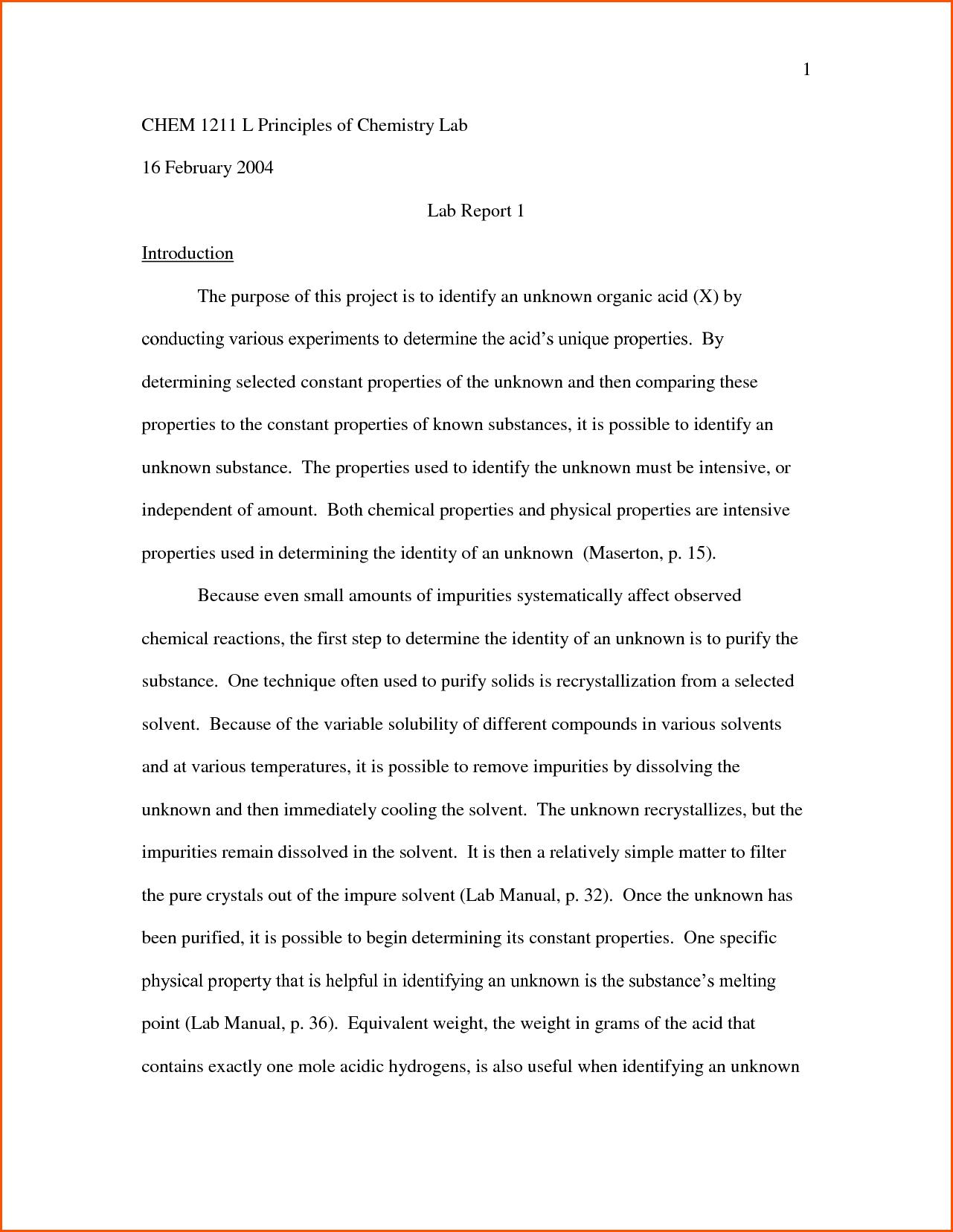 essays about hamlet