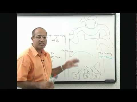 Dr  Najeeb: Respiration Process 1/6 - YouTube | Medical School