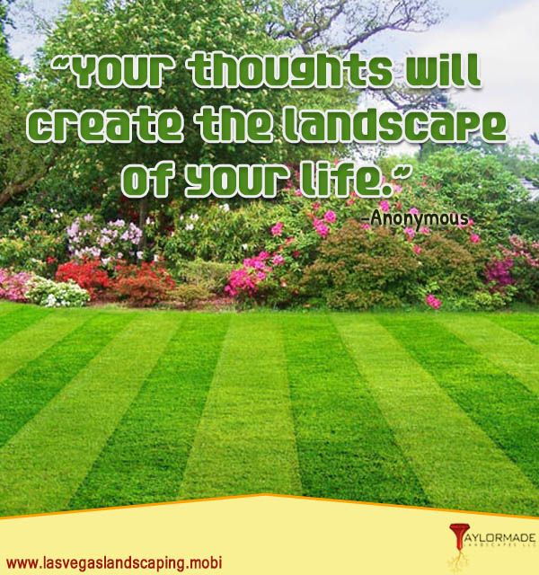 Landscaping Quotes Impressive Landscape Installation  Motivational Quotes  Pinterest