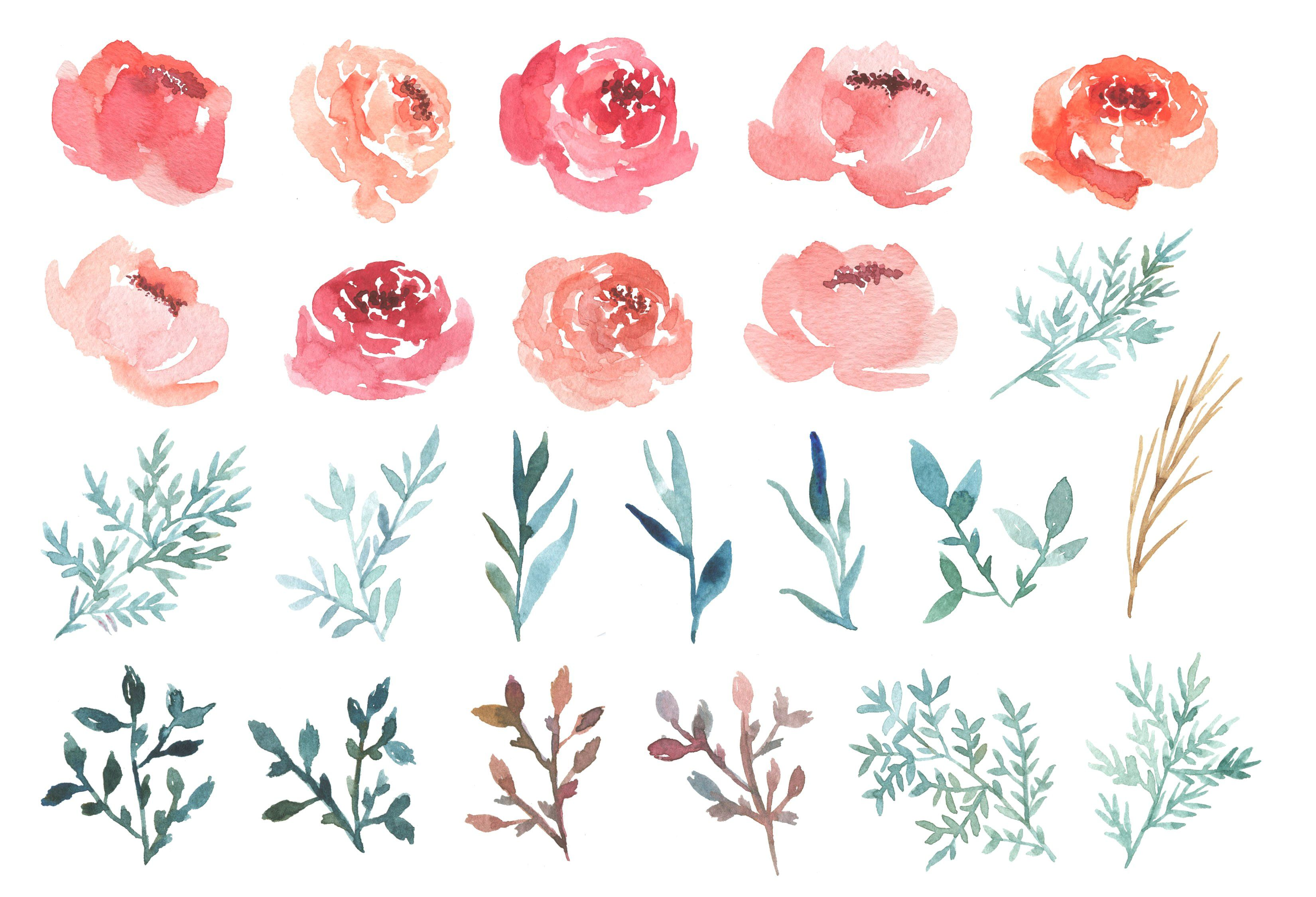 Watercolor Peonies Peony Drawing Watercolor Flowers Tutorial