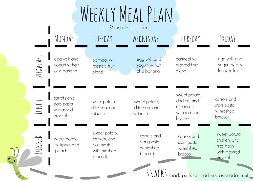9 month old food plan one hour, fresh ingredients, and a week\u0027s