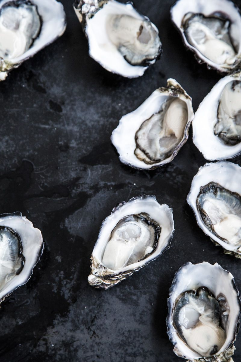 Who could say no to these fresh oysters and a glass of award winning te Pa wine? #nzwine #tepawines