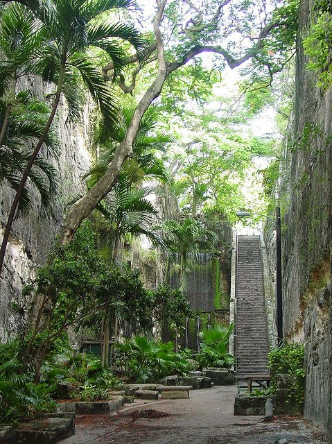 This is the Queens Staircase, Nassau, Bahamas . I walked down these when I was expecting my daughter then we brought the kids back here to do the stairs years later.