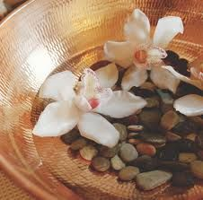 Ayurveda stresses the use of plant-based medicines and treatments. Hundreds of plant-based medicines are employed, including cardamom and cinnamon. Some animal products may also be used.