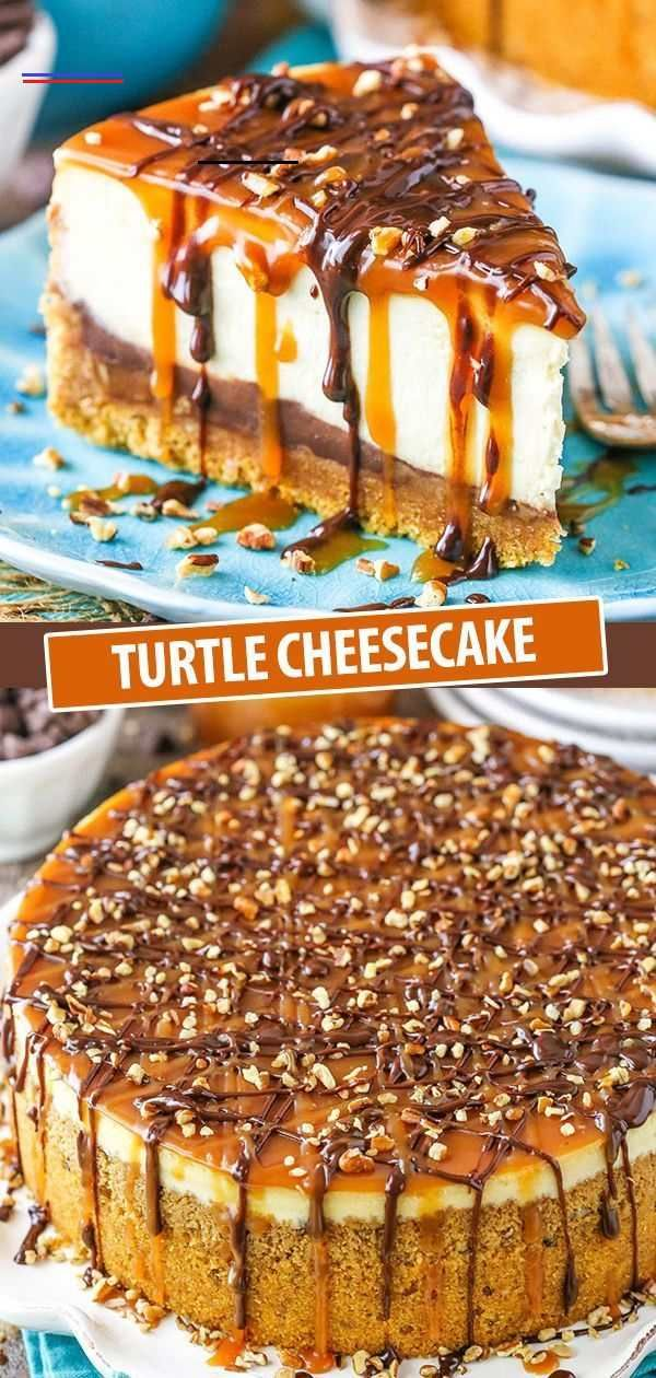 Turtle Cheesecake | Easy Recipe with Caramel & Chocolate Turtle Cheesecake | Easy Recipe with Caramel & Chocolate, #Caramel #Cheesecake #Chocolate #Easy #Recipe #Turtle #turtlecheesecakerecipes