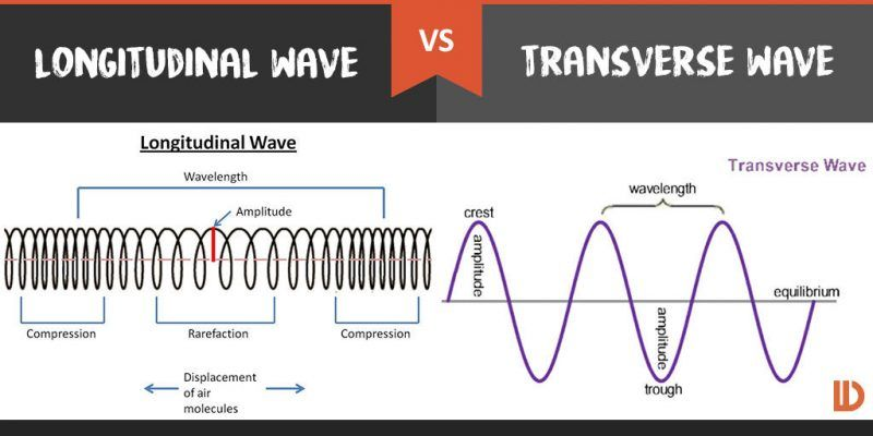 Image Result For Transverse And Longitudinal Waves Physics