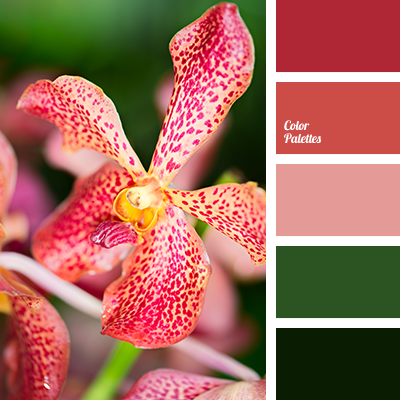 Color Palette #3039