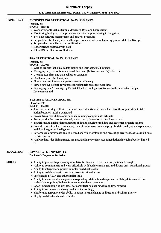 20 Business Data Analyst Resume