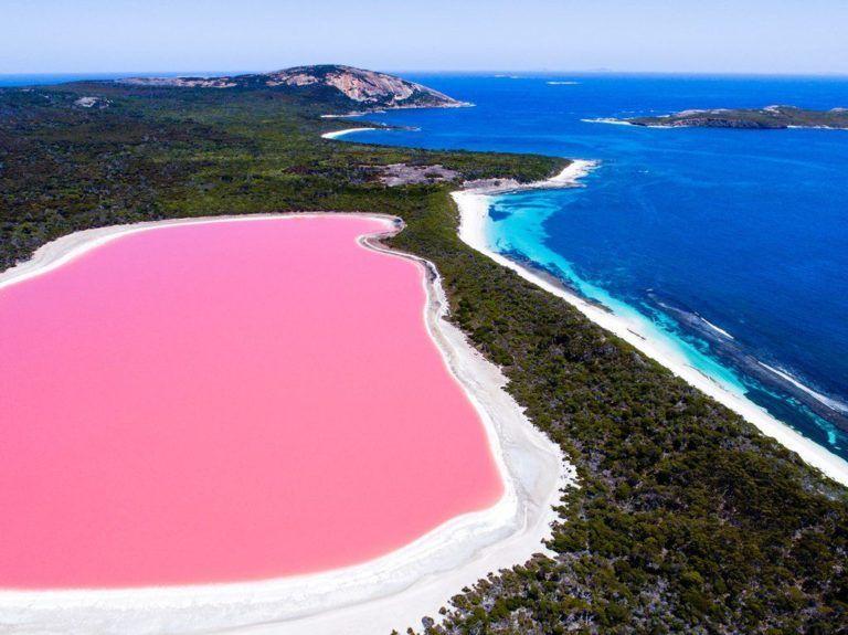 pink lake ile ilgili görsel sonucu
