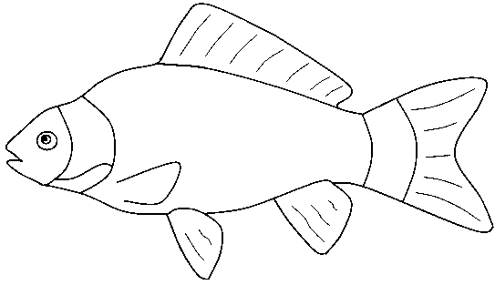 fish - Goldfish Coloring Pages Printable