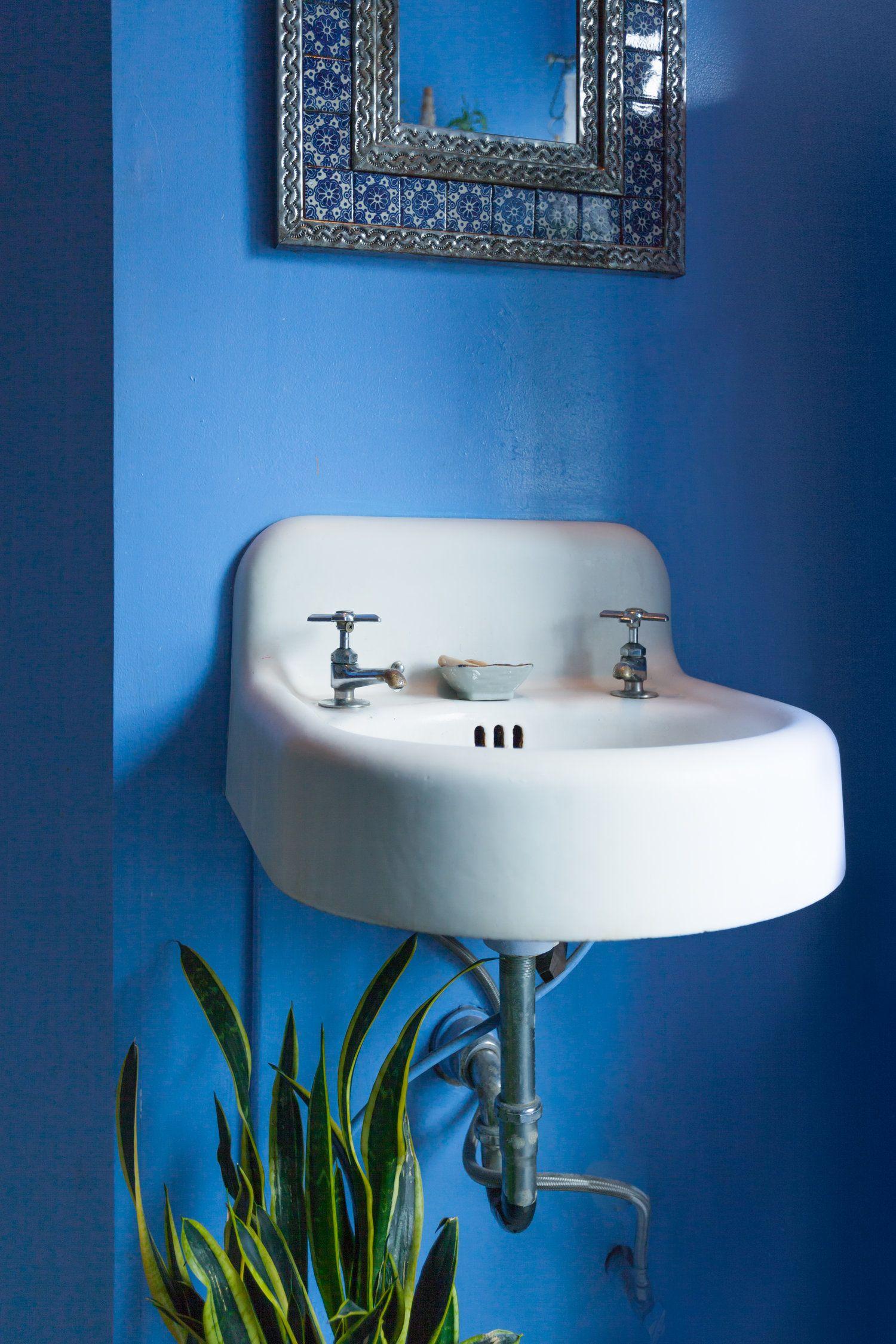 A Sansevieria trifasciata sits below my bathroom sink, obstructing on security sink snake, plumbing snake, glass snake, toilet snake, best sink snake, sink drain snake, bathroom drain snake, garden snake,