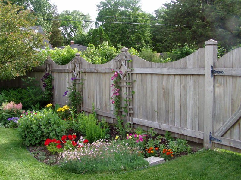 gardenscape landscaping for privacy this fence on backyard fence landscaping id=23046