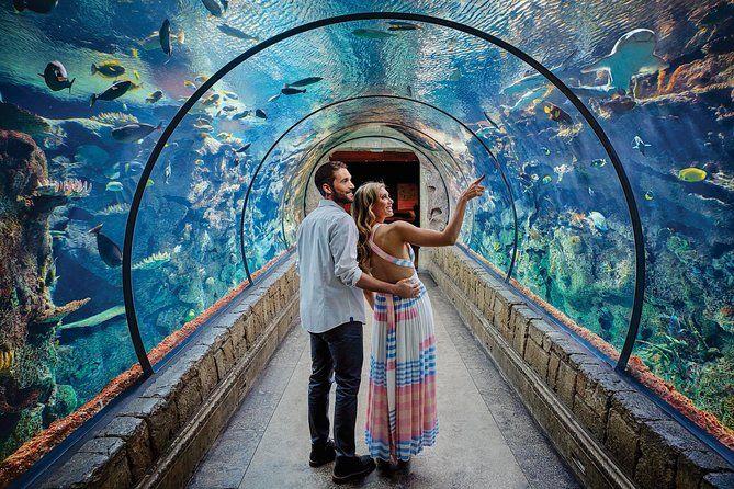 Shark Reef at Mandalay Bay Hotel and Casino | Mandalay bay ...