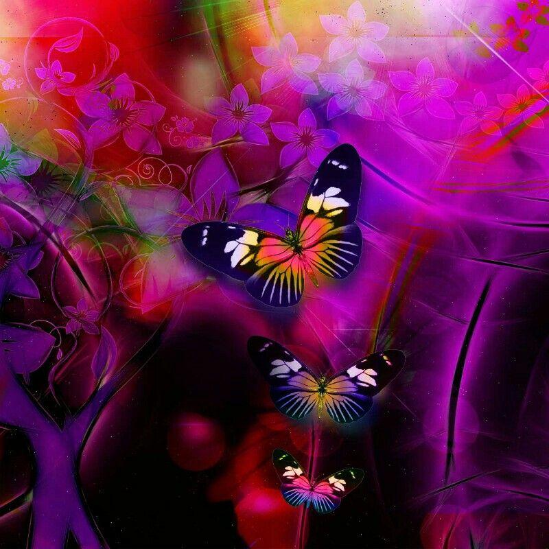 Pin de Lisa Placencia en butterflies | Pinterest