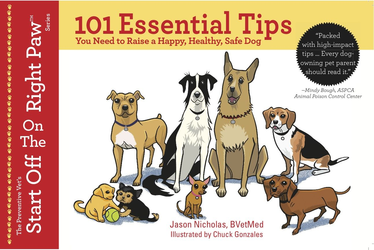 101 Essential Tips You Need To Raise A Happy Healthy Safe Dog