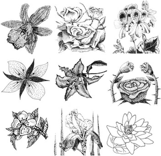 Types Of Flower Arrangement Shapes: How To Draw Different Types Of Flowers