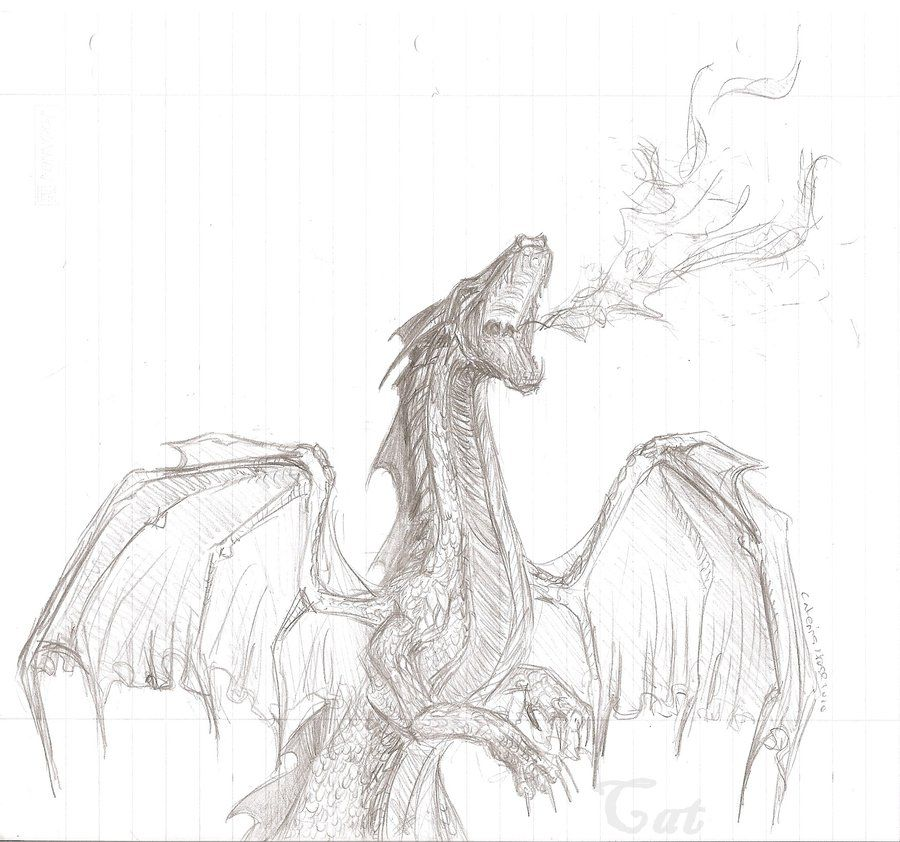 Dragon Drawing Google Search Fire Sketch Fire Drawing Dragon