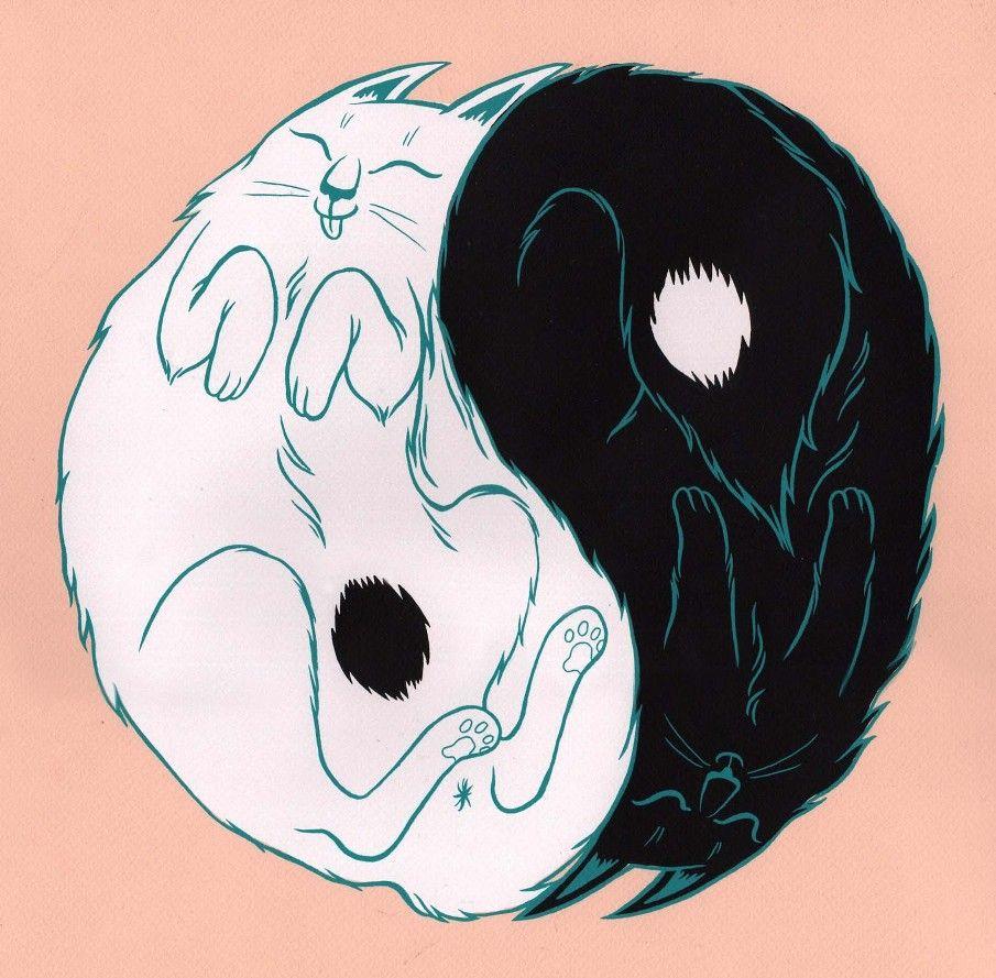 Yin Yang Cats - Kjersti Faret Portfolio