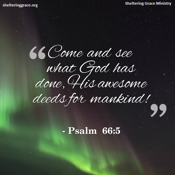 Bible Quotes About Helping People: Help #homeless #singlemoms. Www.shelteringgrace.org