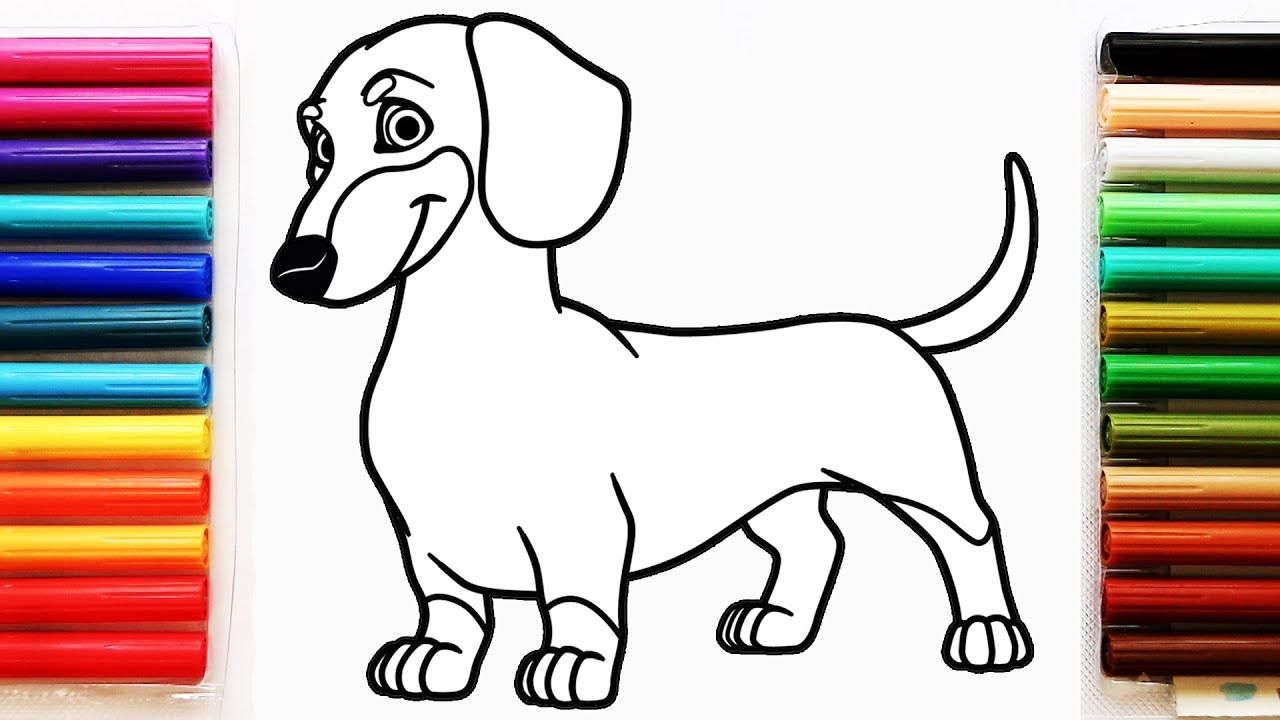 Pin By I Love Dachshund On I Love Dachshund Dog Coloring Page