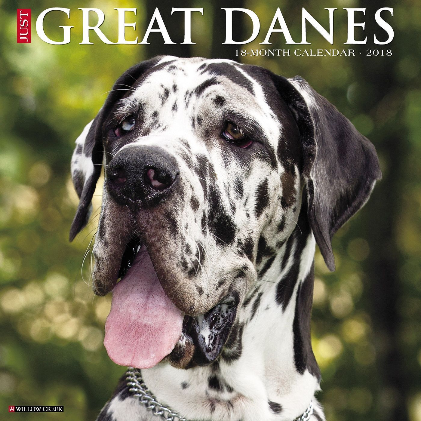Great Dane Patient And Friendly Great Dane Dane Puppies Dog