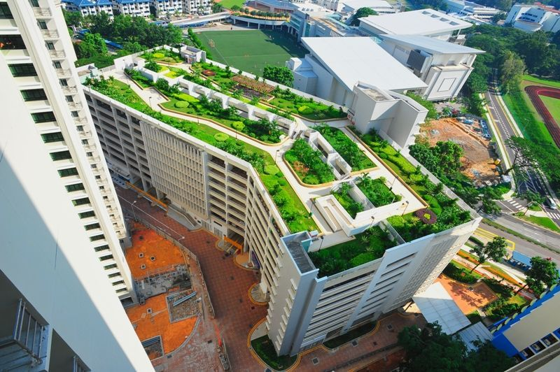 Hdb Car Park Roof Singapore Greenroof Rooftopgardens Green Roof Roof Garden Sky Garden