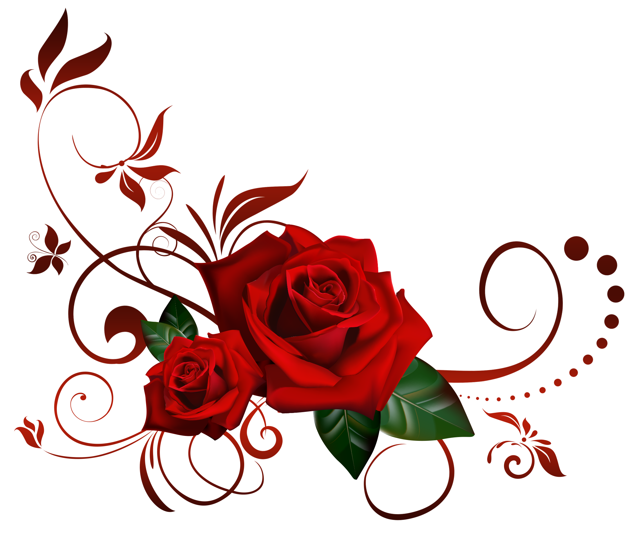 Red Rose Png Flowers Images And Clipart Transparent Background Red Rose Png Flower Art Red Roses