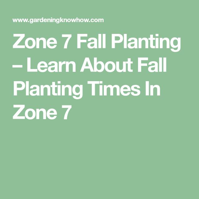 Planting Fall Gardens: Fall Gardening Guide For Zone 7