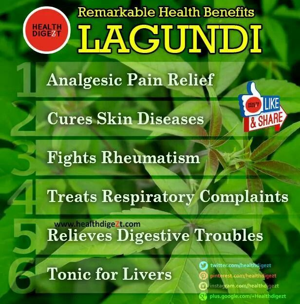 infograph of lagundi tea