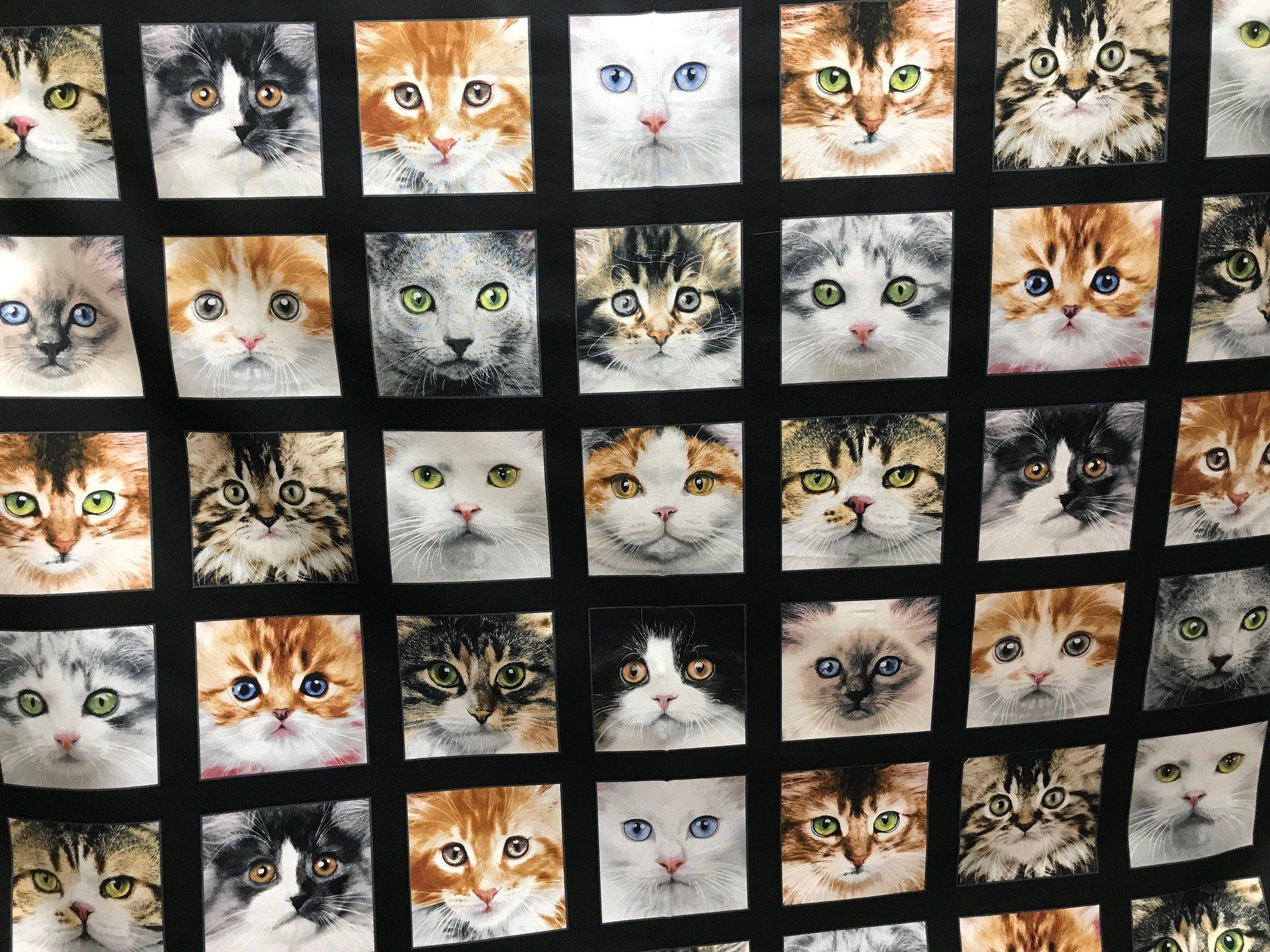 Cat Panel Fabric Elizabeth S Studio Keith Kimbralin Etsy Cat Fabric Beautiful Cats Kitten Care