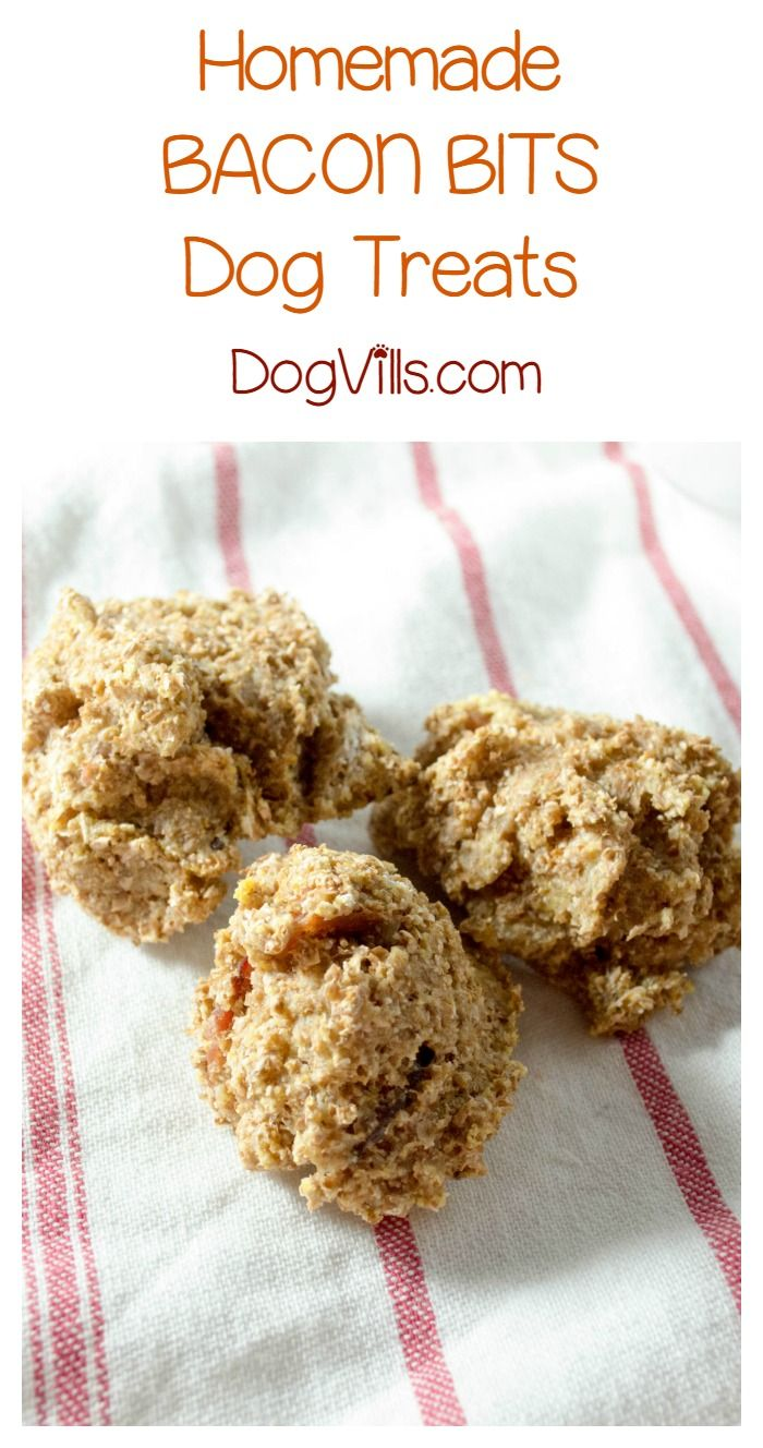 Bacon Bits Recipe Healthy Dog Treats Dog Biscuit Recipes