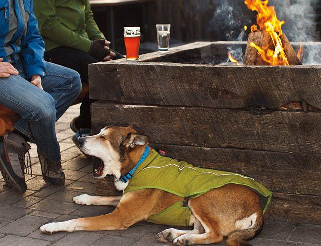 Railroad Tie Border Planter Fire Pit Dog Coats Dogs