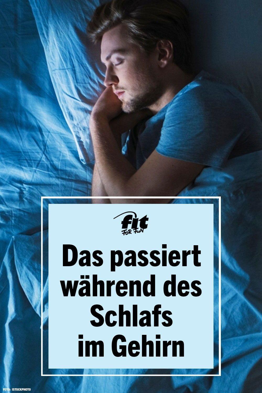 Etwa ein Drittel seines Lebens verbringt der Mensch mit Schlafen. Dauerhaft zu wenig Nachtruhe trübt nicht nur die Stimmung, sondern kann auch ernsthafte Folgen für die Gesundheit haben. Forscher haben untersucht, was während des Schlafs mit dem Gehirn passiert und verraten, warum guter und erholsamer Schlaf für unsere Gesundheit so wichtig ist. #Schlaf #schlafgesundheit #erholsamerschlaf #gesundheit
