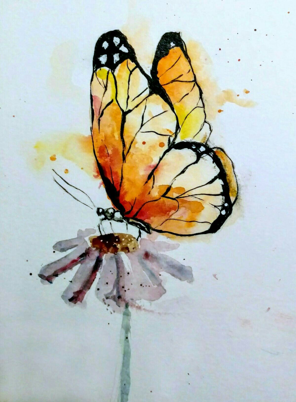 Pin By Abigail King On Pretty Things Butterfly Watercolor