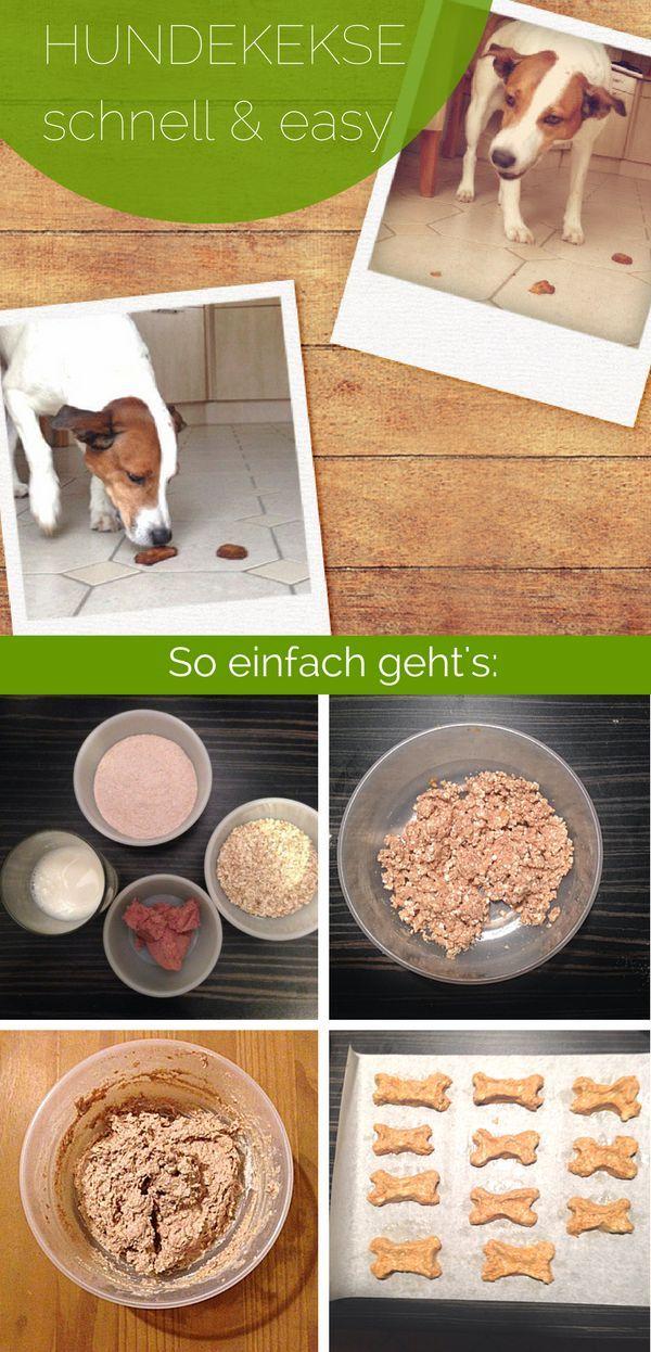 Hundekuchen backen – 3 einfache Rezepte