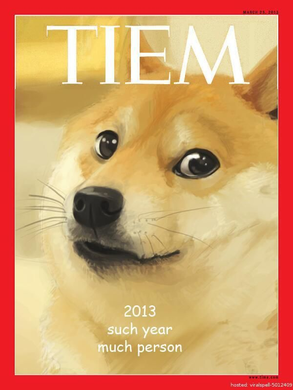 Are you tired of cynical memes? Doge's naiveté exploded