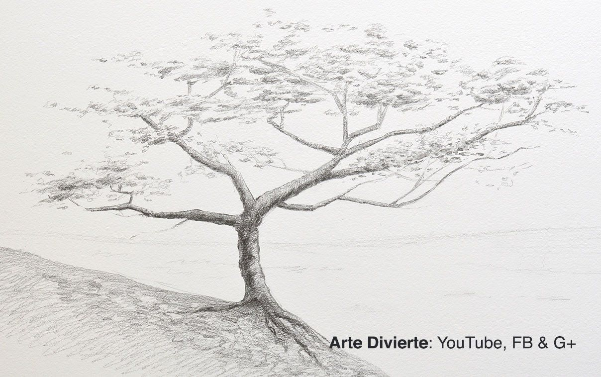 Como Dibujar Un Arbol A Lapiz Tree Drawing Tree Drawings Pencil Tree Sketches