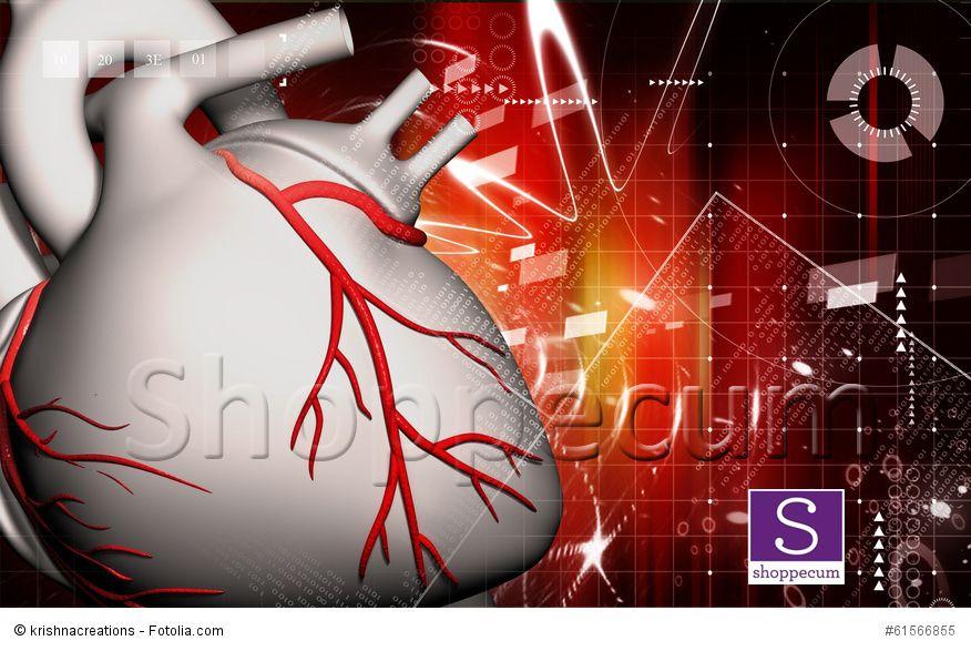 El corazón en 3D. Entra aquí y observa el movimiento de las venas ...