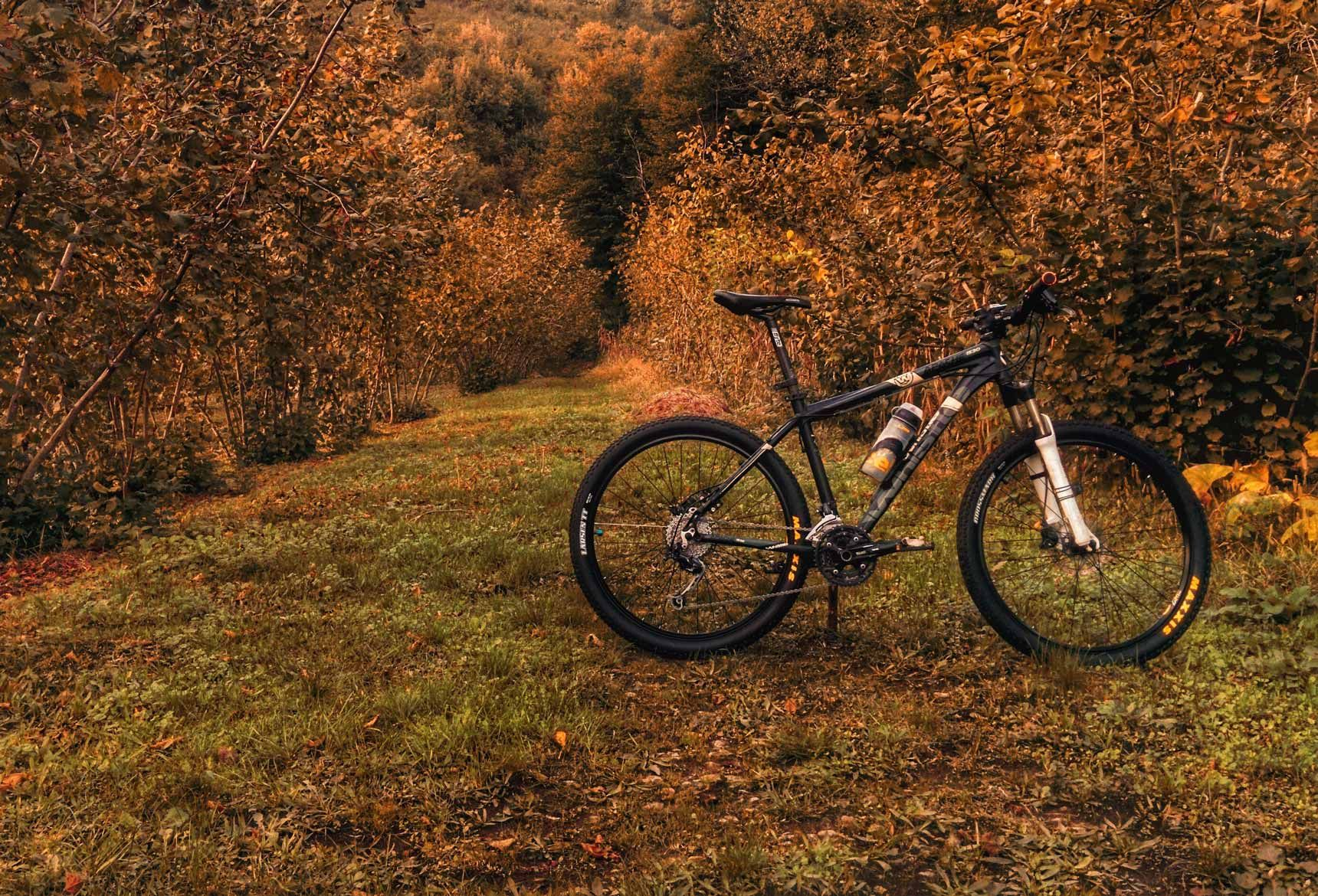 The 15 Best Mountain Bike Trails In The U S Best Mountain Bikes