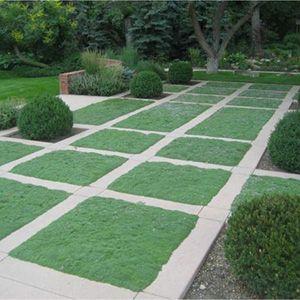 mẫu sân vườn đẹp://giare.net/mau-san-vuon-dep.html   logo on garden park logos, garden club logos, garden logos design, garden nursery logos,