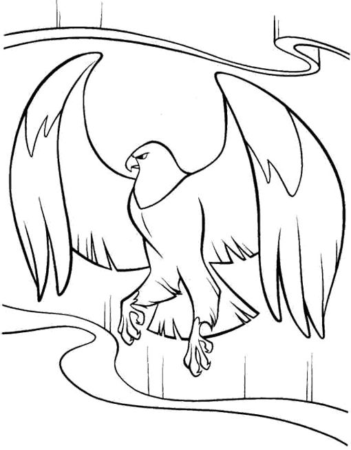 Cartoon Eagle Coloring Pages Kids Coloring Pages Pinterest - new eagles to coloring pages