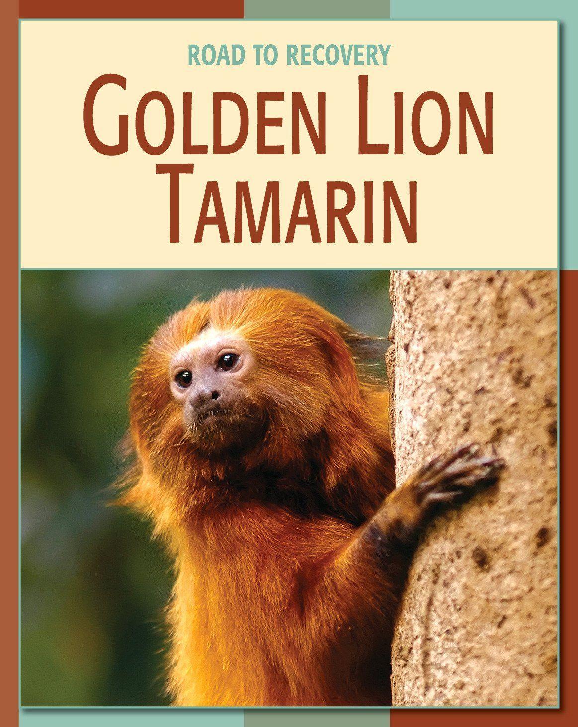 Golden Lion Tamarin 21st Century Skills Library Road To